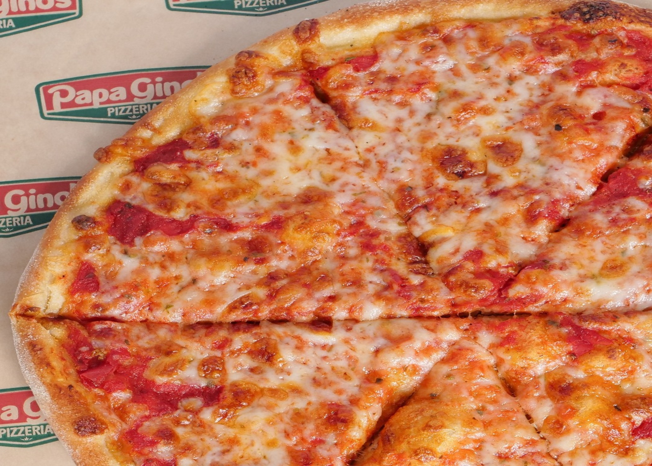 Papa Gino's Pizza